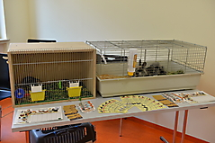 Stadtteilzentrum Kitzingen Siedlung_19