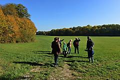 Herbstwanderung vom KKV_19
