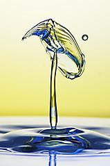 Wassertropfen_235